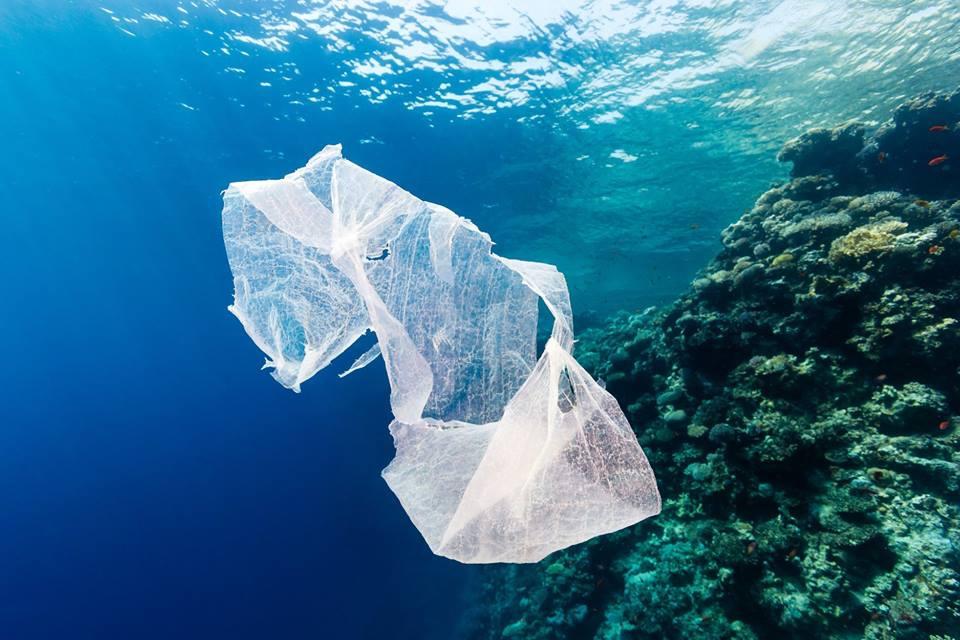 Biodegradabili, sequestrate 8 tonnellate di buste con etichettafalsa