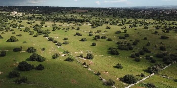 "Impianto di biogas, Pisani-Lorefice M5S: ""Preservare c.da ZimmardoBellamagna"""